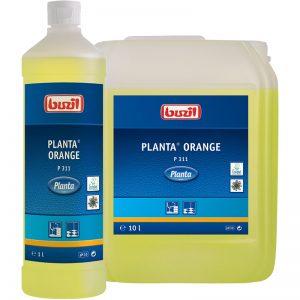 Planta Orange P 311